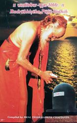 Picture of Puja Vidhi: Rudrabhisheka Puja