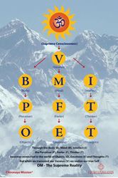 "Picture of BMI Chart printed poster 24""x36"""